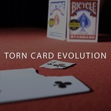 Torn Card Evolution (TCE) with Online instruction 관객이 찢어낸 카드가 레몬속에서 나타날 수 있을까요?